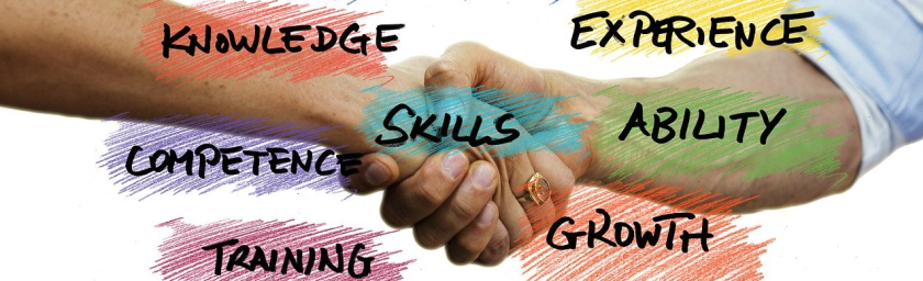 Two people shaking hands knowledge experience skills competence ability